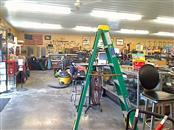 WERNER Ladder 6 FT LADDER